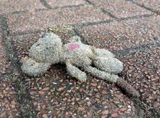 knuffel op straat