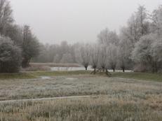 sfeerfoto winter in de Natuurtuin
